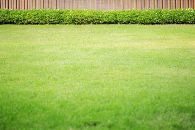 Avtomatska košnja trave