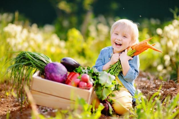 Oprema na vrtu mora biti tako za otroke kot odrasle